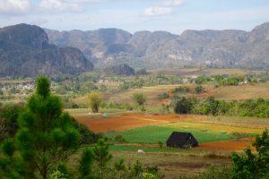 Ein Landschaftsbild von Vitales, meinem zweiten Ort beim Backpacking Kuba