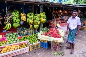 Bunter Obstmarkt