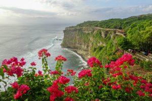 Felsenküste und Blumen bei Uluwatu