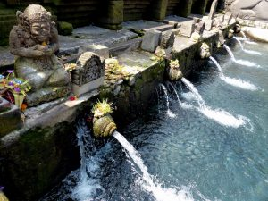 Backpacker's favorite temple in Bali, the Ubud water temple