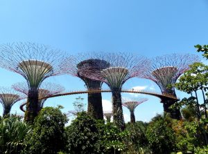 Backpacking Singapore trip to the Gardens by the Bay
