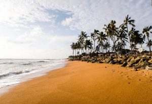 Beach with palms in Negombo