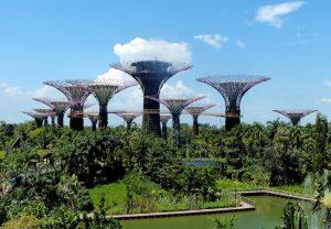 Visum für Singapur - die Gardens by the Bay