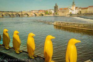 Sehenswerte Straßenkunst in Prag