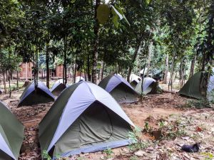 Zelten in Taman Negara beim Backpacking in Malaysia