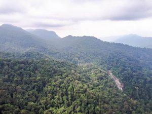 Lese Reisetipps für Backpacker in Malaysia