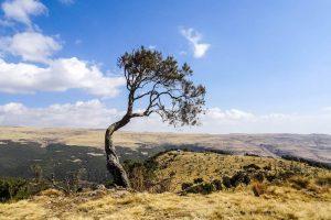 Reisen durch äthiopisches Hochland