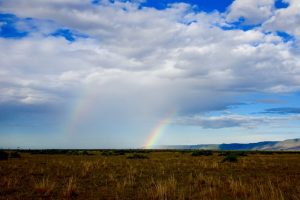 Regenbogen im Nationalpark in Kenia