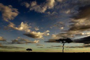 Sonnenuntergang bei der Safari in Kenia