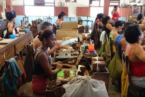 A cigar factory while backpacking around Cuba