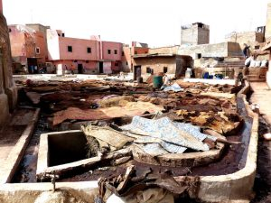 Visiting a tannery in Marrakech