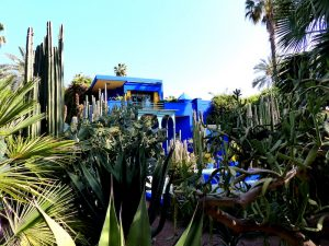 Visit at Jardin Majorelle in marrakech