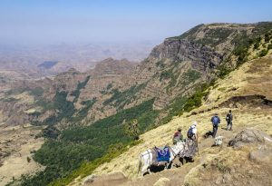 Backpacking Ethiopia through the Simien Mountains