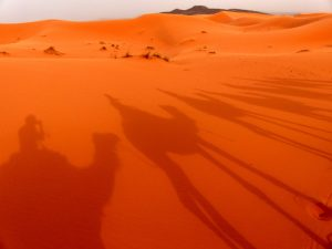 Sand dunes of Morocco