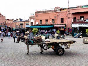 Die Altstadt Medina von Marrakesch