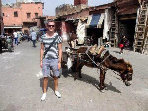 Mit Esel in der Altstadt Marrakeschs