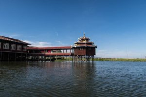 Jumping Cat Monastery at Inle in Myanmar
