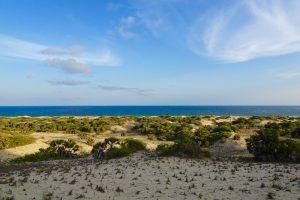 Sanddünen von Lamu