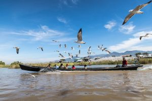 Exploring the lake by boat when backpacking Inle lake
