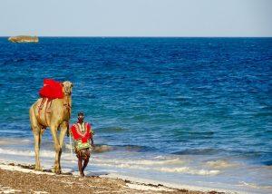 Sehenswürdigkeiten Kenia: Watamu Strand