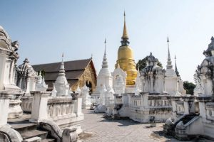 Wat Suan Dok Tempel when backpacking in Chiang Mai