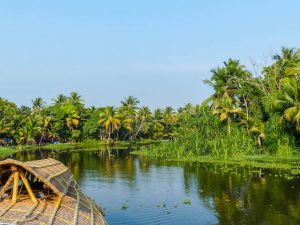 Reiseapotheke Indien, Backwaters Kerala