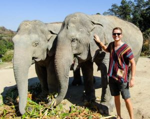Visiting elephants is a highlight for people on a Thailand backpacking trip