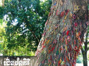 Besuch der sehenswerten Killing Fields in Kambodscha, Baum mit Schleifen
