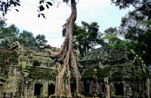 Kambodscha Sehenswürdigkeiten Angkor Wat Tempel