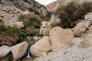 Fluss und Steine im ein gedi Nationalpark israel