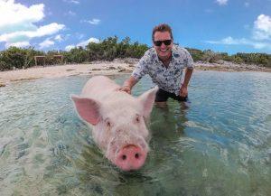 Fotos mit Schwein im Meer