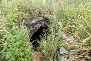 Eingang zur Höhle im Gras