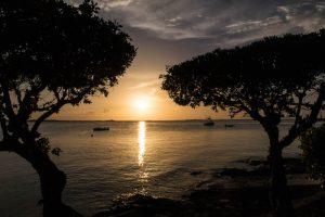 Sonnenuntergang zwischen Bäumen