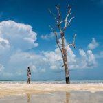 Harbour Island (Bahamas) Guide: Alle Sehenswürdigkeiten & Reisetipps!