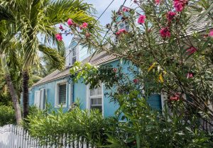 Blaues Haus mit Blumen