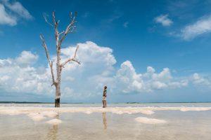 Strand und Meer mit einzelnem Baum