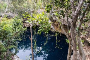Das blaue Loch auf Eleuthera im Wald
