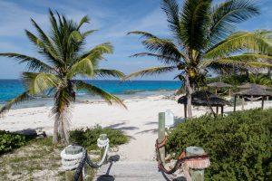 Weg zum Strand mit Palmen und Meer