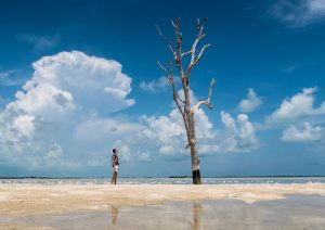 Person and tree on beach
