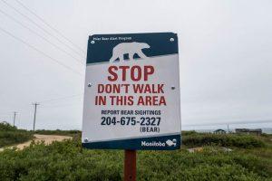 Warnschild vor Eisbären