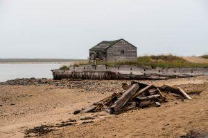 Strand und Holz mit Hütte am Ufer