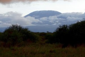 View from Kilimanjaro from the foot