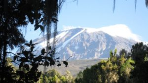 View of Kilimanjaro with snow