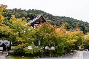 Eikendo Tempel mit Bäumen im Herbst