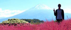 Silhouette vor Fuji Berg mit roten Blumen davor