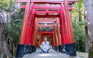 Torii Tore am Schrein als Teil der Japan Sehenswürdigkeiten