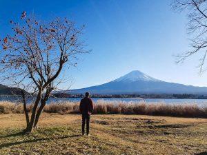 Ufer des Kawaguchi Sees mit Baum und Person und Berg im Hintergrund