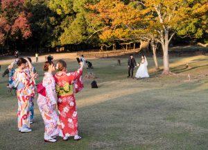 Japanerinnen machen Selfie im Park von Nara