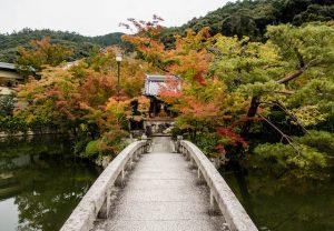 Brücke über Fluss mit Bäumen im Hintergrund
