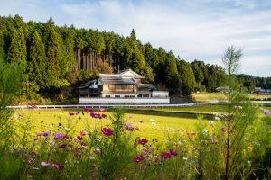 Reisfelder mit Haus und Blumen davor in Nara Japan